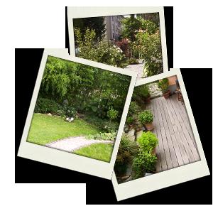 MainGarten - Gartenplanung und Gartengestaltung in ...